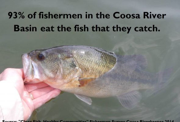 Coosa Riverkeeper Introduces New Fish Guide, Toll-Free Fish Advisory Hotline